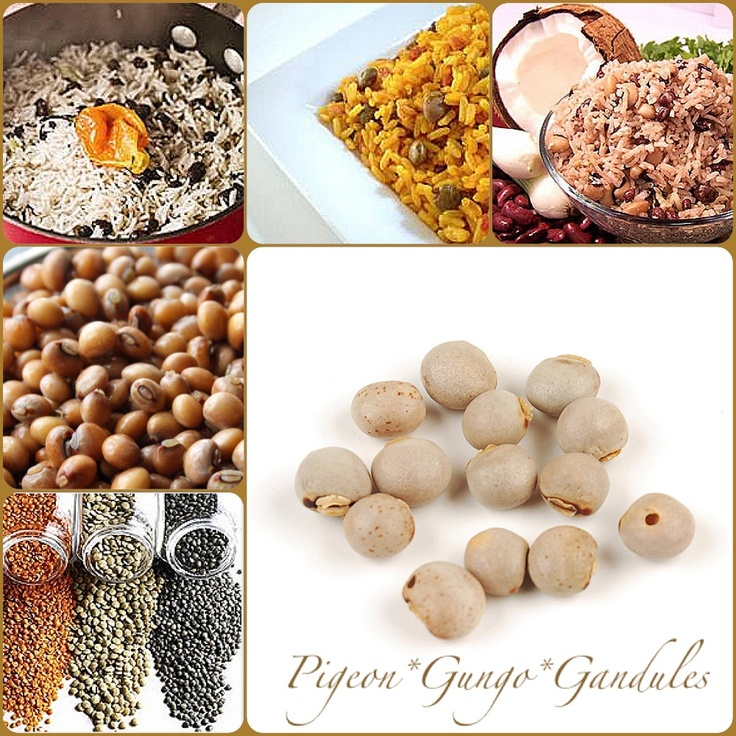 Toor  or Pigeon Peas:  They contain high levels of protein and the important amino acids methionine, lysine, and tryptophan. The dried peas may be sprouted briefly, then cooked, for a flavor different from the green or dried peas.   Sprouting also enhances the digestibility of dried pigeon peas.  In India, split pigeon peas (toor dal) are one of the most popular pulses, being an important source of protein in a mostly vegetarian diet.
