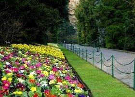 Giardini Botanici di VILLA TARANTO - Verbania