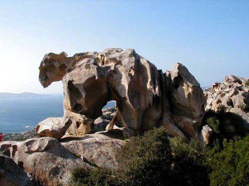 L'orso di Palau, Sardegna