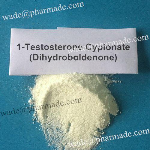 1-Testosterone Cypionate Powder Dihydroboldenone Powder from wade@pharmade.com Tags: 1-Testosterone Cypionate powder, 1-Testosterone Base powder, Buy 1-Testosterone Cypionate Powder, Dihydroboldenone powder, Buy Dihydroboldenone Powder Online, 1-Testosterone Cyp powder online source, Supply Dihydroboldenone powder, Dihydroboldenone powder price