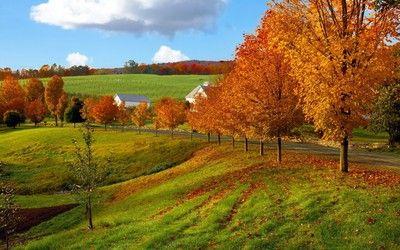 Farm during autumn wallpaper