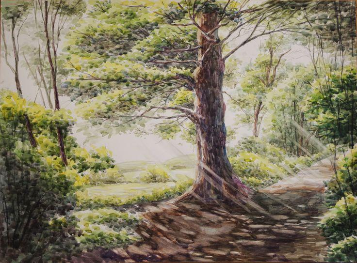 Landscape - By Artist Jack