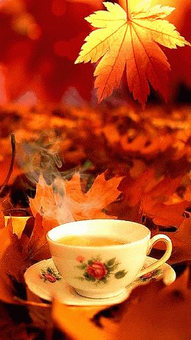 Coffee on a cool autumn morning...