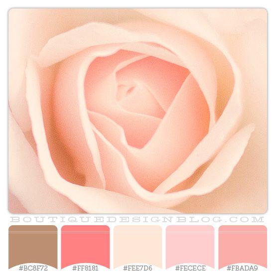 273 besten color palettes bilder auf pinterest for Wandfarben palette