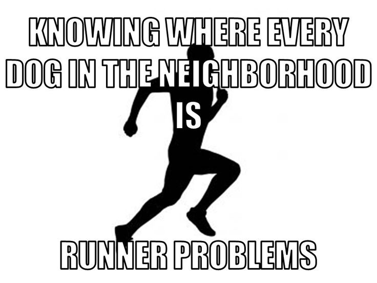 You know your a runner when...you know where every dog in the neighborhood is.