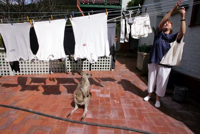 Take A Look At The Laundry Routines Around The World: Hartley Vale, Australia