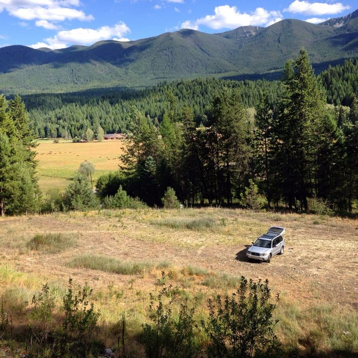 How We Researched, Found and Purchased the Best Land For Our Off Grid Homestead