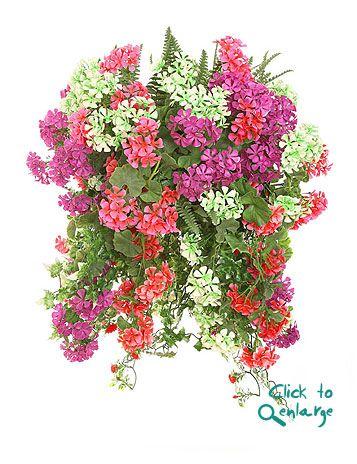 Image detail for -OUTDOOR PLANTS Floor Plants 3 Ft Floor Plants 4Ft-5Ft Hanging Baskets ...