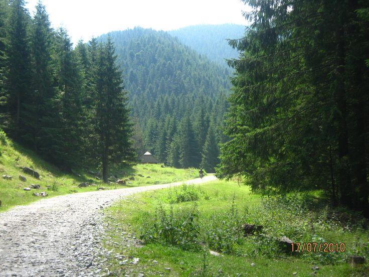 #Moeciu de Jos #Romania