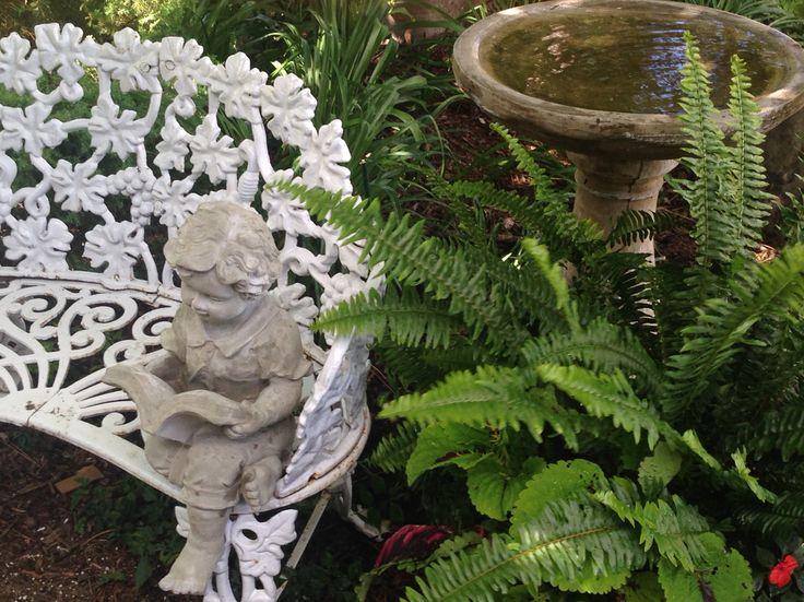 Reader boy garden statue, bird bath and ferns