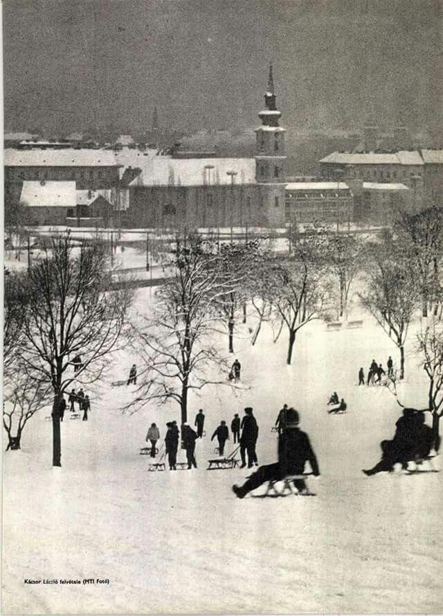 1971. Szánkózás a Tabánban.