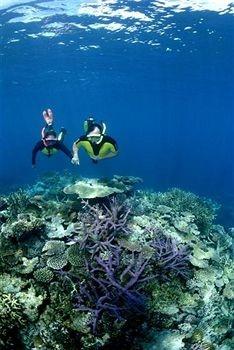 Nukubati Island, Fiji....snorkeling is a must