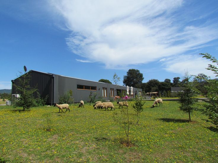 Casa Martinich Ibarboure, Punucapa, Chile, 2010, by Schmidt.Restrepo Arquitectos