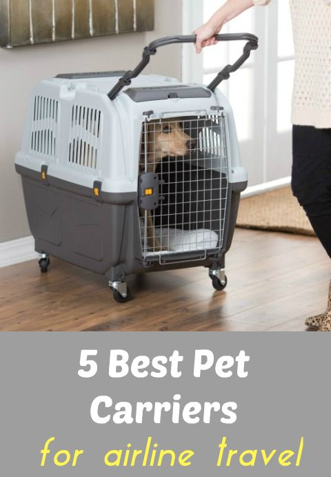 5 Best Pet Carriers And Tips For Safe Airline Cargo Flights ... see more at PetsLady.com ... The FUN site for Animal Lovers