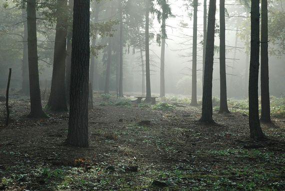 Wie ich einen Mord erlebe. Zum Artikel: http://www.huffingtonpost.de/michi-jo-standl/wie-ich-einen-mord-erlebe_b_7273500.html?utm_hp_ref=blogs