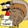 Wednesday Words--Turkey in Disguise