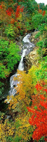 White Oak Falls, Virginia