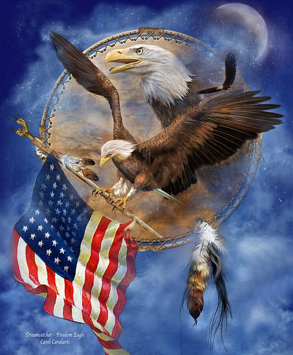 This artwork of a bald eagle in flight, carrying the American Flag, with a profile of another eagle within a dream catcher, is from the Patriotic Collection by Carol Cavalaris.