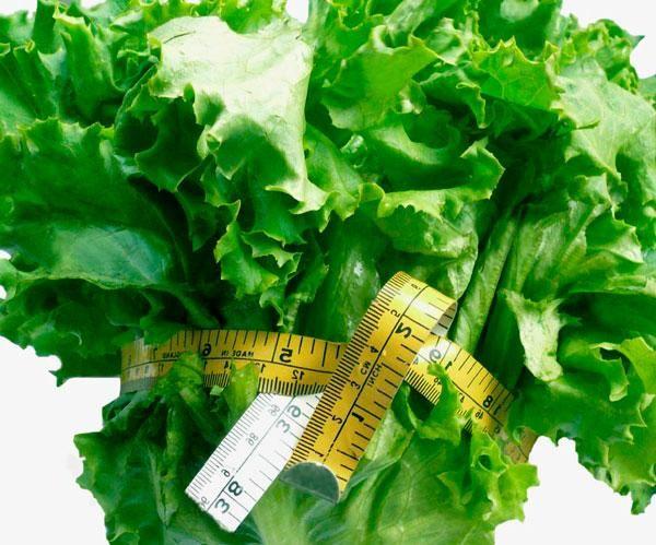Qu cenar para adelgazar y perder peso cocina - Que cenar para perder peso rapido ...
