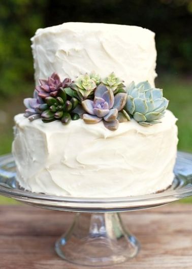 Succulent Wedding Cake (I have more on the Wedding - desert  board)