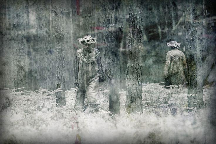 fotografia - portret niezwykły: las