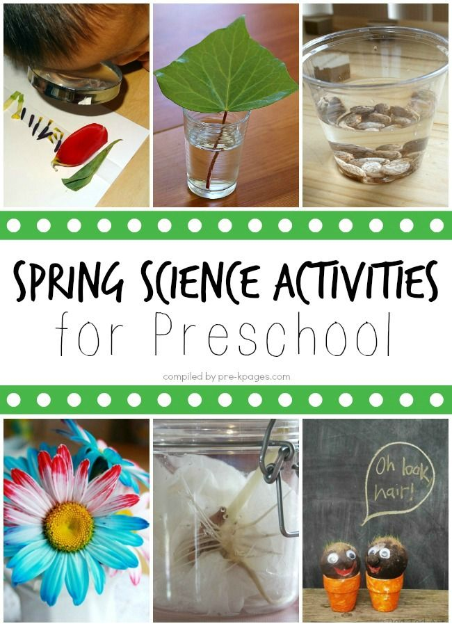 Spring Activities, Crafts, and Lessons