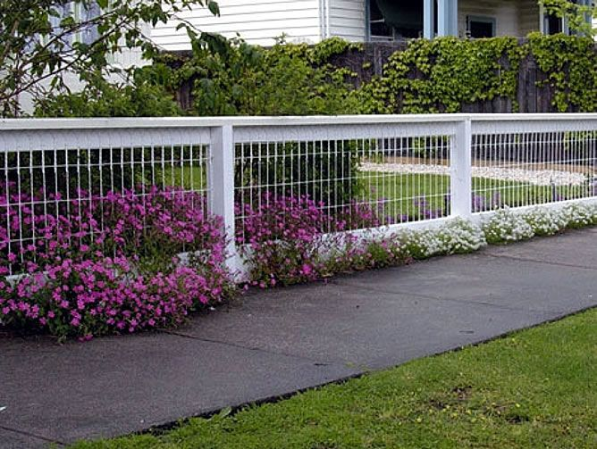 Exteriors, Wonderful Modern Cool Nice Backyard Fencing Idea With White Shorter Concept Made Of Iron With Wondeful Flower Decoration Around The Fence ~ Wonderful Making of Backyard Fencing