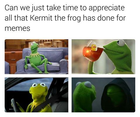 I JUST REBLOGGED A TUMBLR APPRECIATION POST ABOUT KERMIT THE FROG MEMES AND JUST HOW MUCH THERE ARE