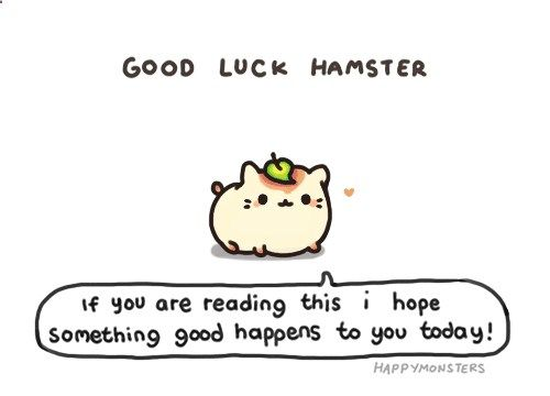 Good luck hamster! COME LOOK AT MY OTHER BOARDS I HAVE CRAFTING, KAWAII, MAKEUP, COOKING, DOLL, COOL/LOL, ANIMALS  MANY MORE AWSOME THINGS!!! follow today