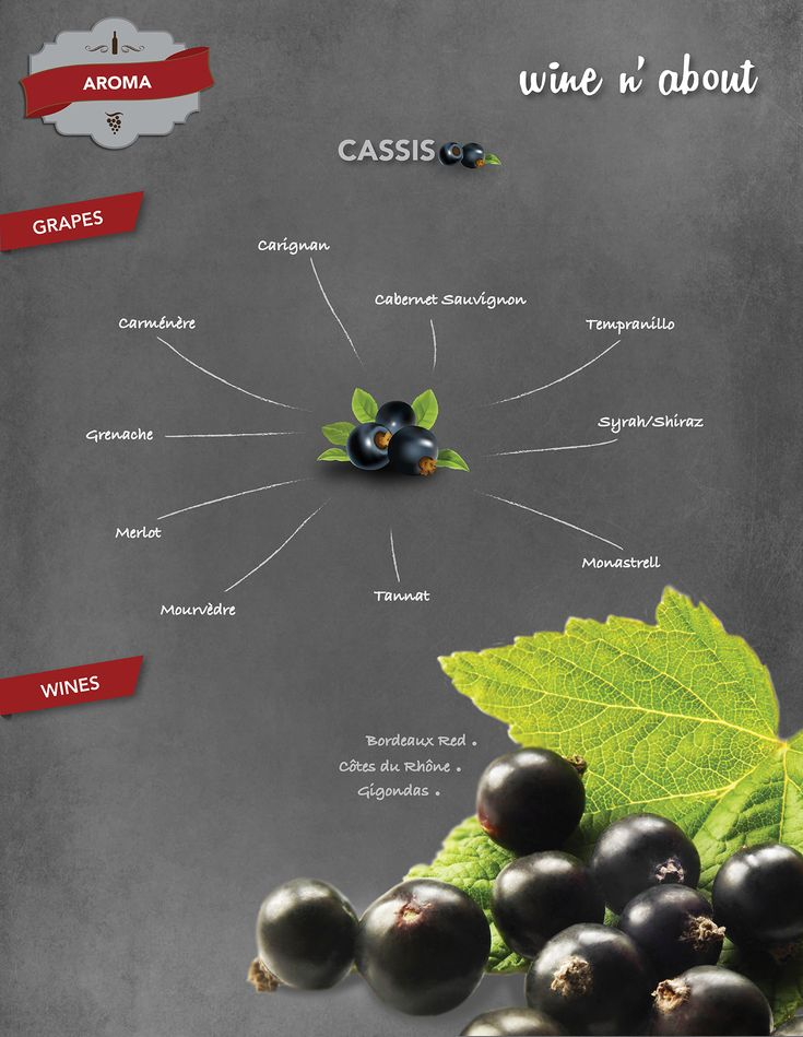 The Cassis aroma is typical of red wines, particularly the ones made of Cabernet Sauvignon. It is very common to find this aroma in the wines from the Bordeaux region, where the grape Cabernet Sauvignon is predominant in the blends.