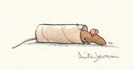Anita Jeram - oooo, the uses for the toilet paper roll!  Mouse-in-a-blanket?