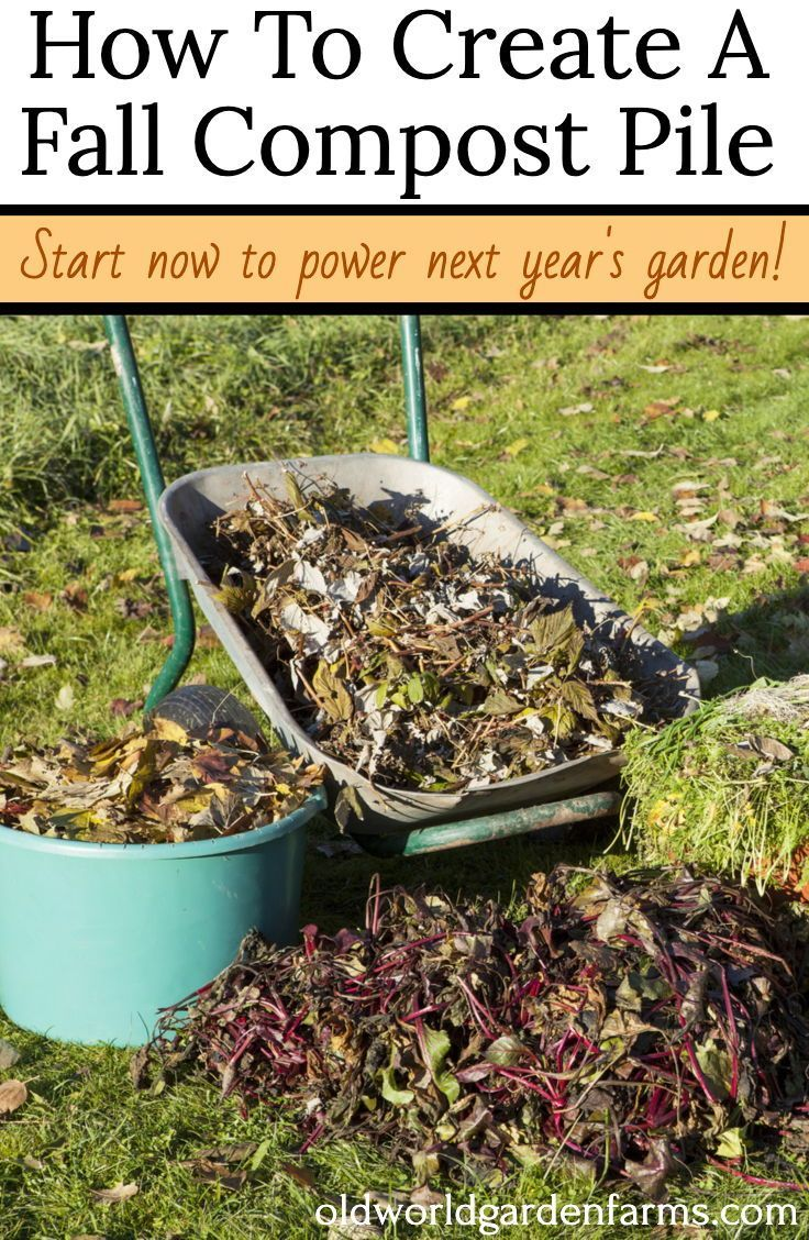 a7f3fa4d642c072861558e323027b777 - How To Prepare Soil For Next Year Gardening