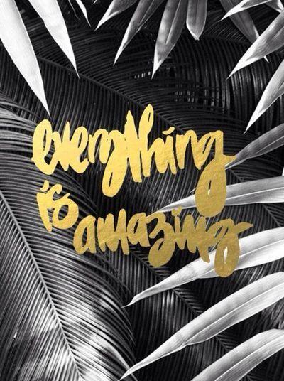 Gold on Black & White . Poster . Typography . Tipografia . Calligrafia . Inspiration . Graphic Design .