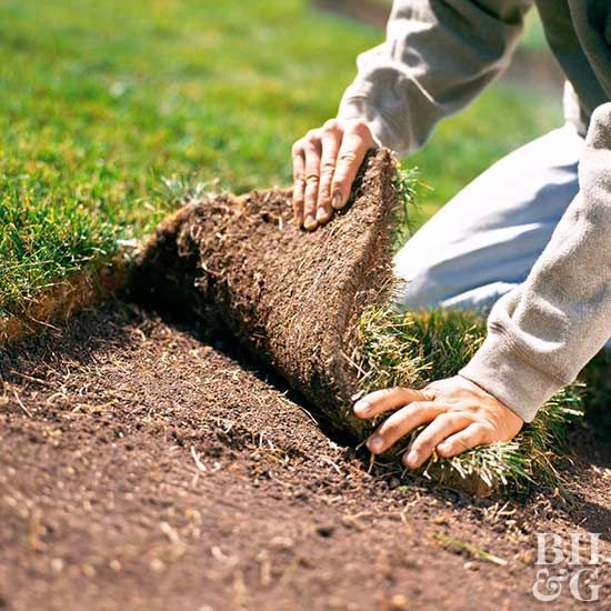Sod is a hefty investment, so it is critical to prepare the planting area and tend the turf with care. Our helpful tips will tell you the best times to lay sod so that it can quickly root. #sod #lawncare #gardening #gardeningtips