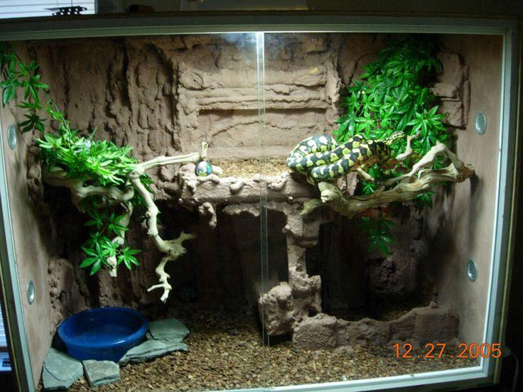 reptile tank | Reptile Tanks Terrarium | Reptile Tanks For Sale