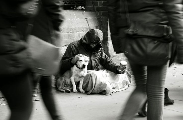 Proof that dogs love you more than money you don't have.  www.petsofthehomeless.org.