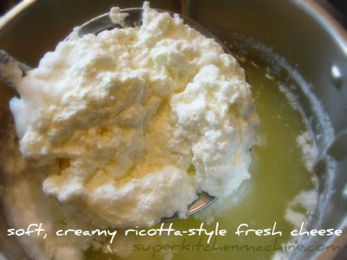 Thermomix ricotta recipe
