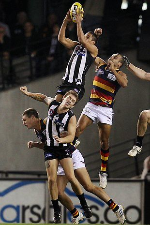 "AFL Football  Australia with (black and white) - The mighty Collingwood football team known as ""The Magpies"""" and Adelaide Football Club known as ""The Crows"".  The pies are my team!"