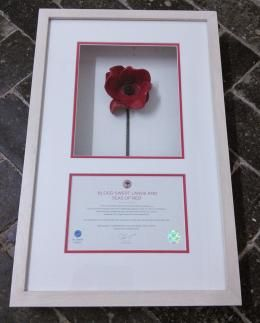 Framed Ceramic Poppy in a Boxed Limewash Frame with Certificate