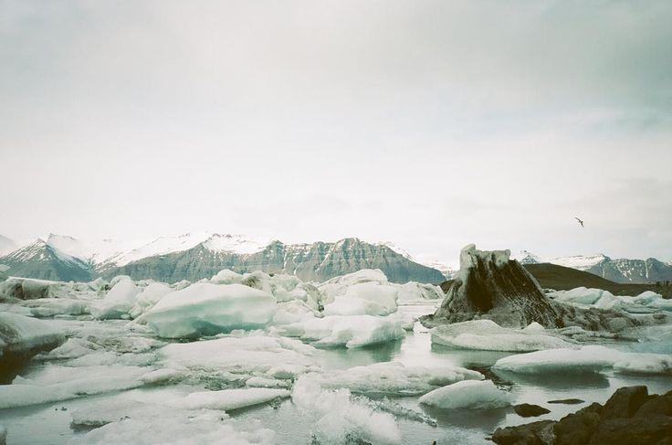 Jökulsárlón Iceland - 2015 - Yashica T4 - Kodak Portra 160 by mickeyalicekwapis