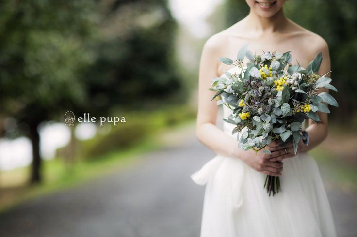 おだやかな前撮り*滋賀 |*elle pupa blog*