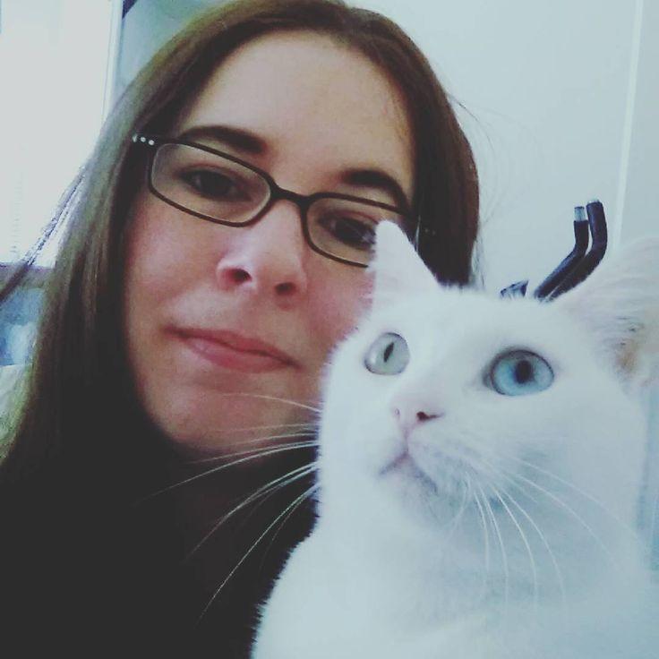 What are you looking at, Ziggy? #meandmycat #catstagram #catsofinstagram #catsofmelbourne #whitecat #bowieeyes #heterochromia #ziggystardust #rescuecat #catprotectionsociety #adoptdontshop