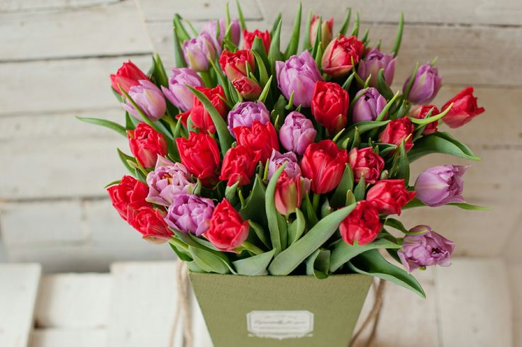 Dzień Kobiet  www.kwiat-kowice.pl/dzień kobiet
