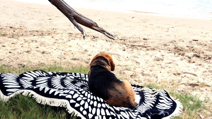 Shop the Roundie Towel by The Beach People. Free Shipping.
