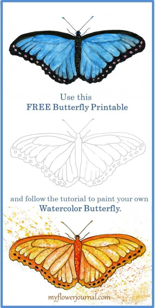Gebruik deze gratis vlinder printbare en volg de tutorial over myflowerjournal.com uw eigen aquarel vlinder schilderen.