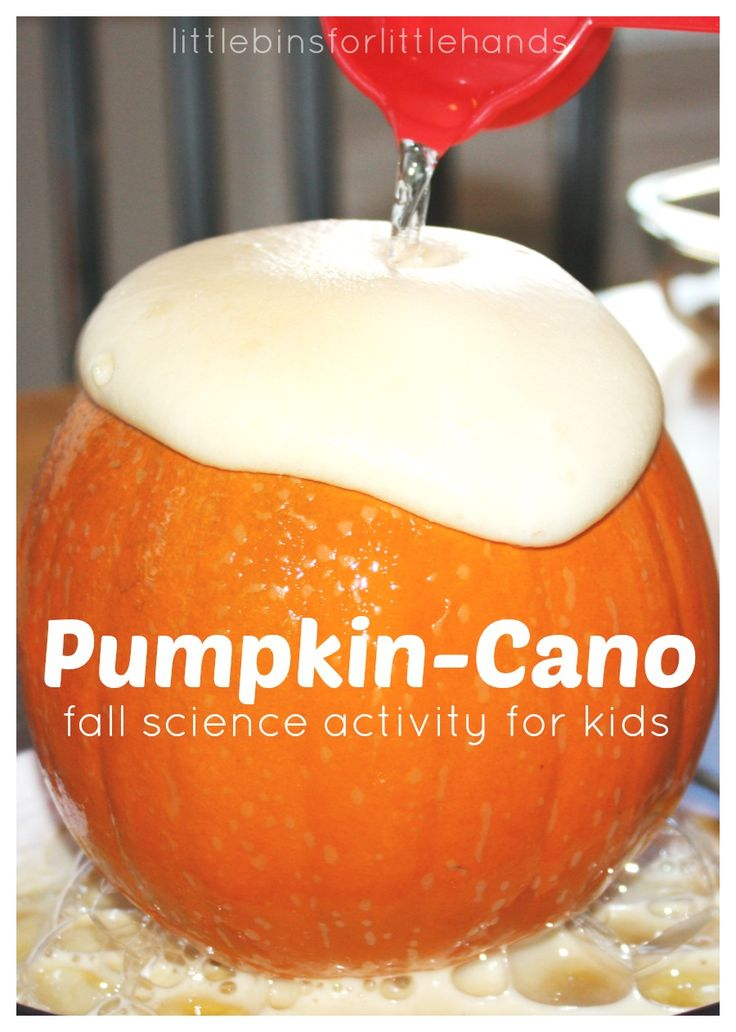 Pumpkin Volcano Science Activity. Fall science experiment with baking soda and vinegar chemical reaction.