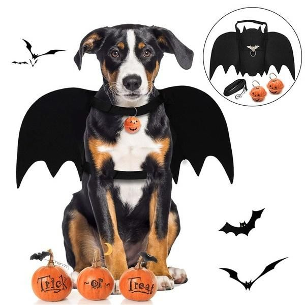 Legendog Dog Halloween Costumes, Halloween Bat Dog Costume/Dog Bat Wings/Dog Fancy Dress Costume/Pet halloween costumes for Medium Large Dogs Cosplay Decoration Costume Chien Halloween, Costume Chat, Bat Costume, Costumes For Dogs, Best Dog Costumes, Halloween Outfits For Dogs, Doodle Halloween, Halloween Kostüm, Bat Dog