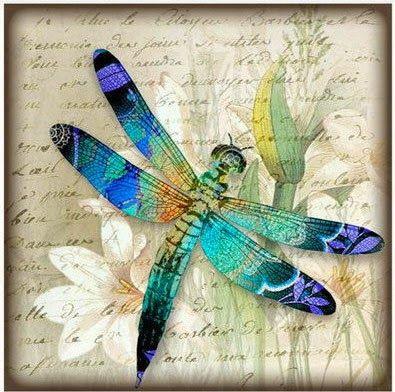 Imprimolandia: libélulas