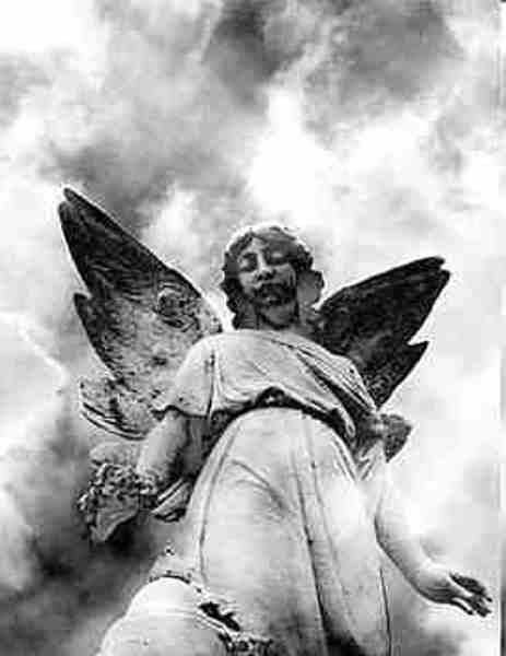 Outra escultura de um anjo gótico. Mais uma vez, surpreendo-me com a expressão.