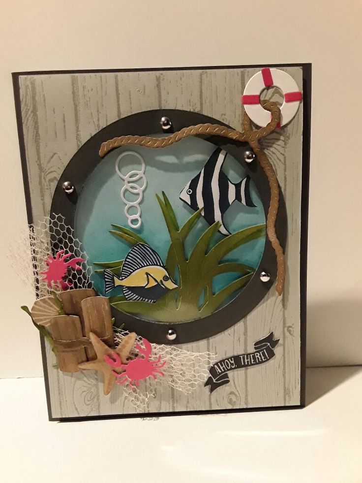 Fish in a porthole